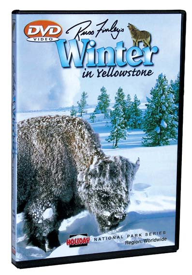 Winter In Yellowstone DVD